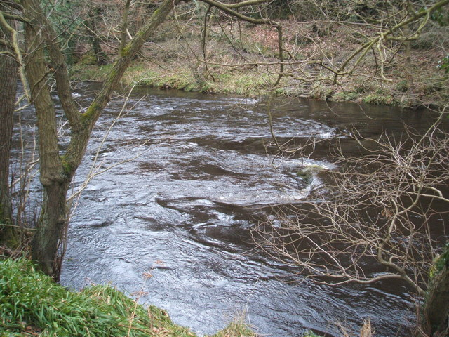 River Derwent in winter