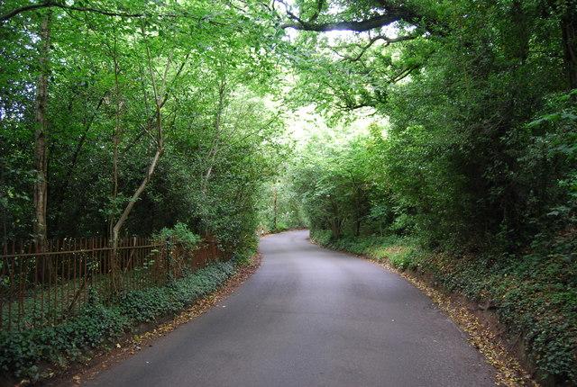 Reynolds Lane
