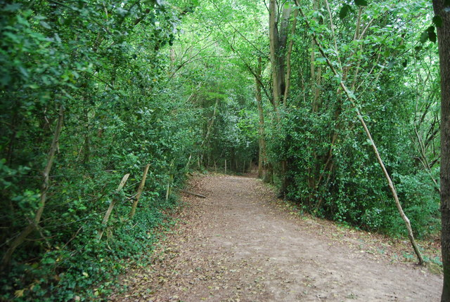 Footpath south to Rusthall