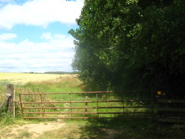 Gate near Calfs wood