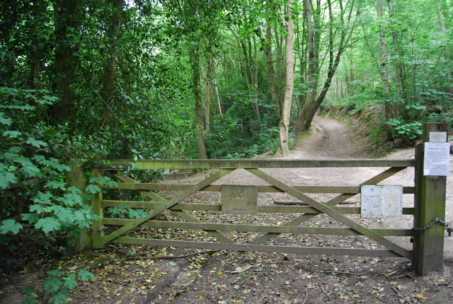 Gate at the southern end of Hurst Wood
