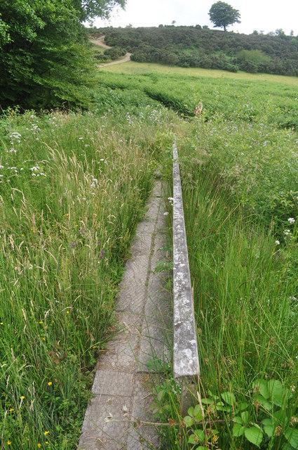 Exmoor : Wimbleball - Footpath & Grass