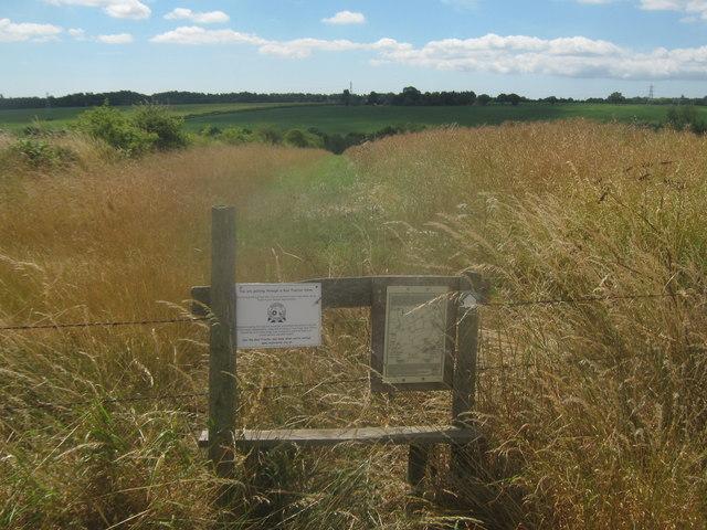 Stile on a permissive path near Buckwell Farm