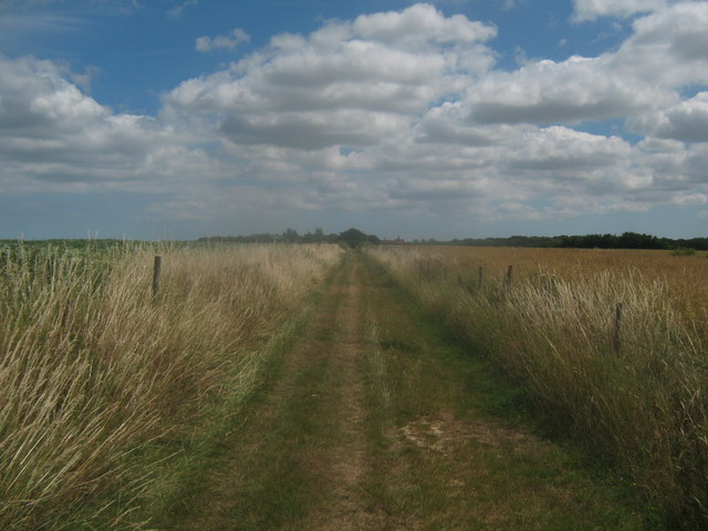 Footpath towards Buckwell Farm
