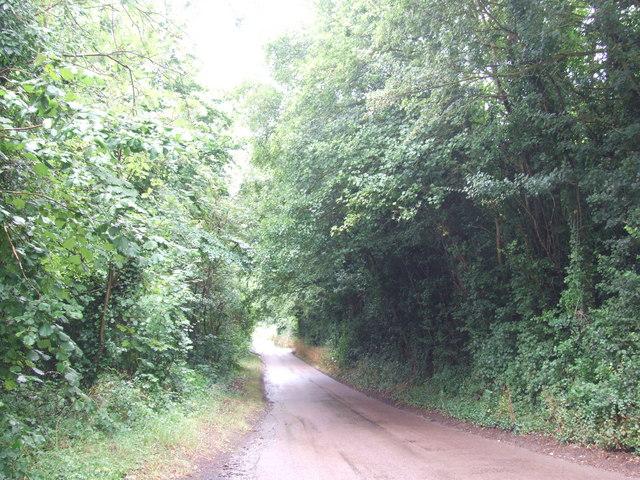 Pilgrims Road, near Upper Halling