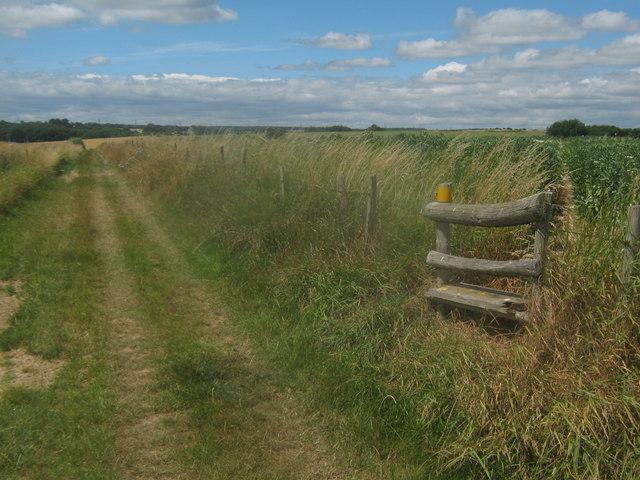 Footpath junction near Buckwell Farm