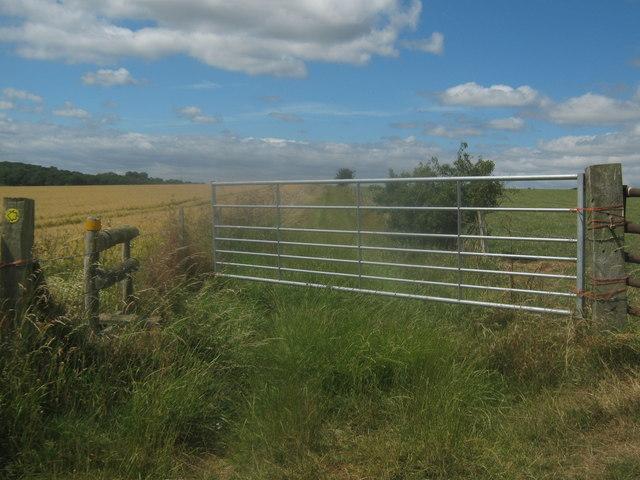 Buckwell Farm gate