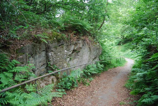 A footpath cut into Tunbridge Wells Sandstone, Rusthall Common
