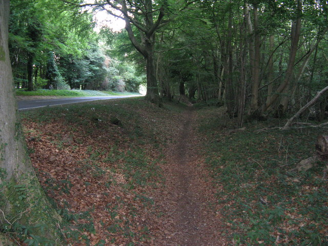 Bridleway parallel to Selhurstpark Road