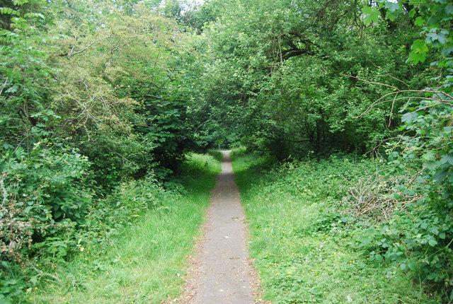Footpath across Rusthall Common