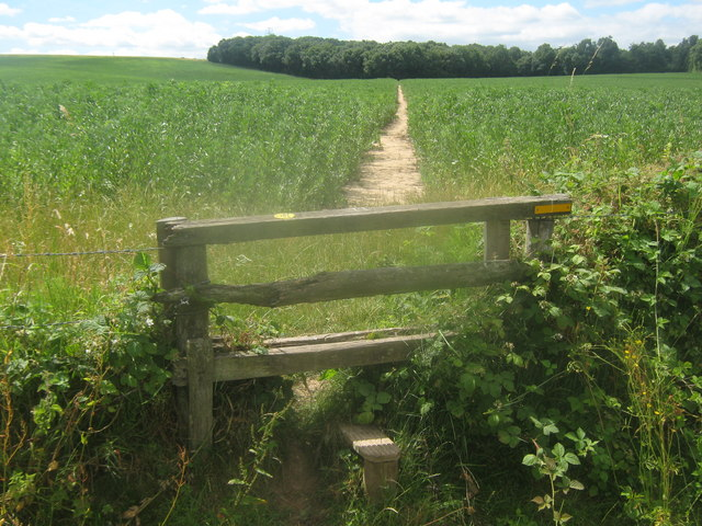 Footpath towards Kemberland Wood