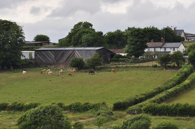 Exmoor : Holworthy Farm