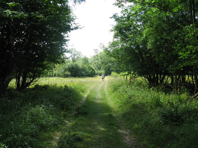 Chichester Challenge charity runners on Monarch's Way