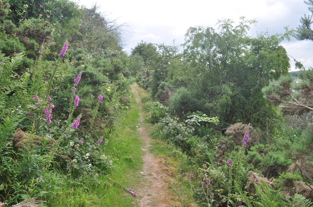 Exmoor : Wimbleball - Footpath