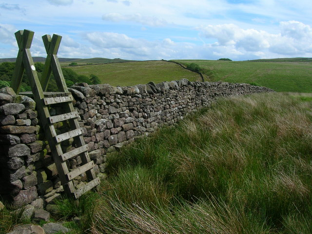 Ladder Stile on Birkett Fell