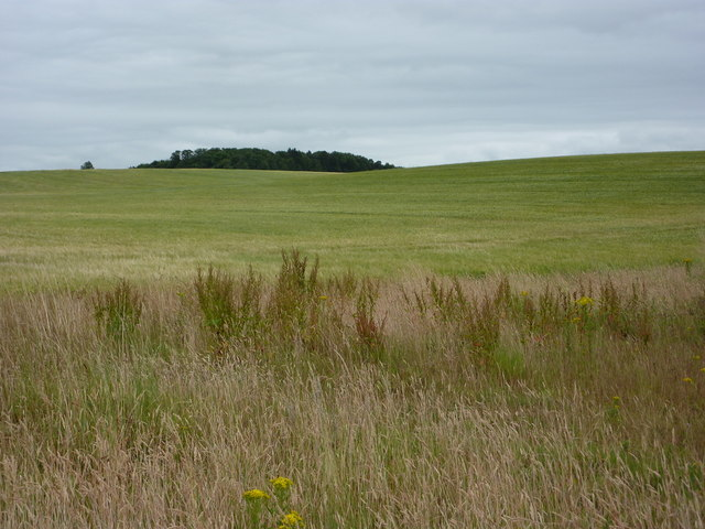 Open fields between Ordsall and Eaton