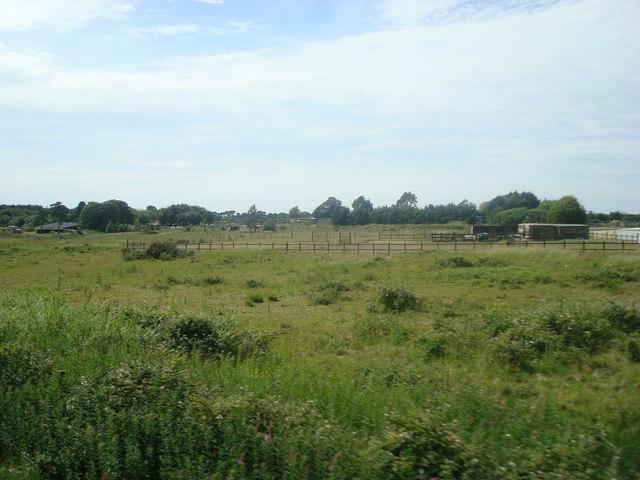 Paddock near Kelling Heath