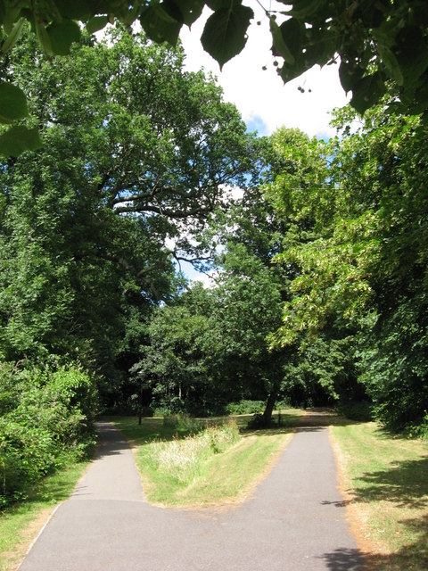 Paths on Southampton Common
