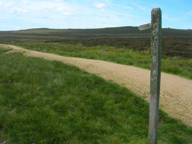 Bridleway to Rylstone