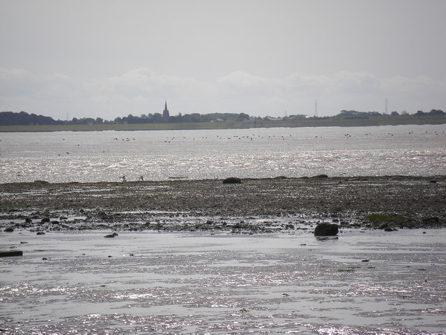 Cocker Channel and birds on Cockerham Sands beyond