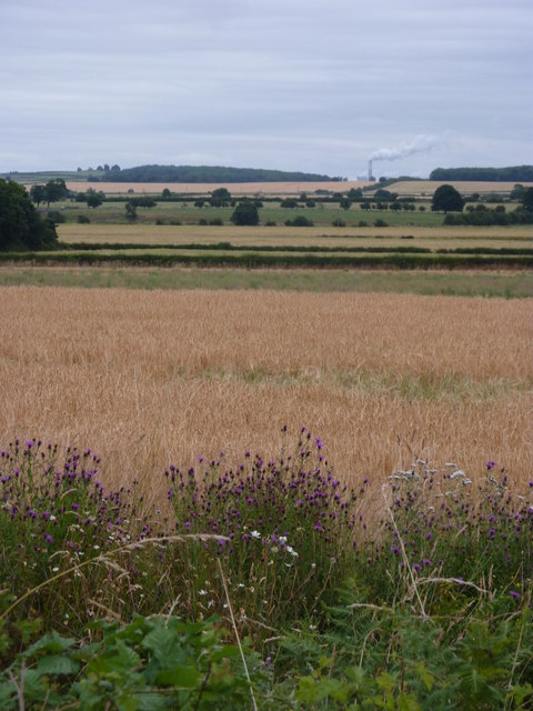 Fields and countryside between Eaton and Gamston