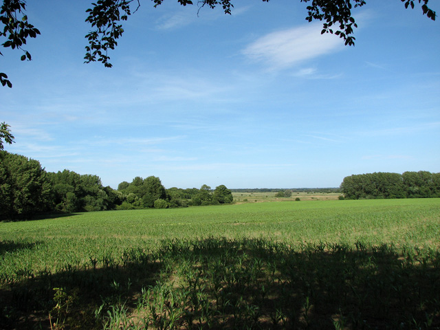 Cultivated fields north-east of Fishley church