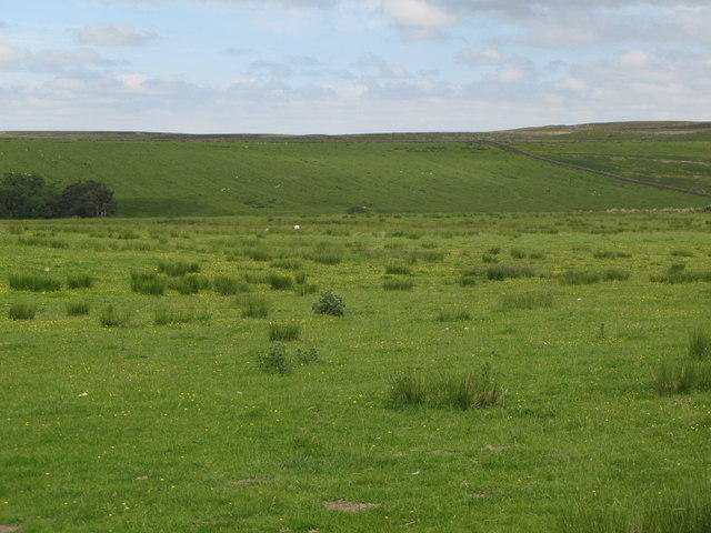 Pastures southwest of Ramshaw