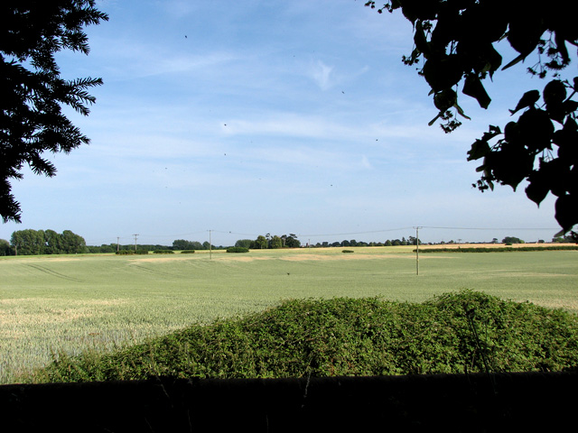 Fields south-east of Upton church