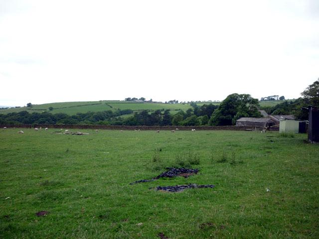 Sheep pasture near St Johns Church