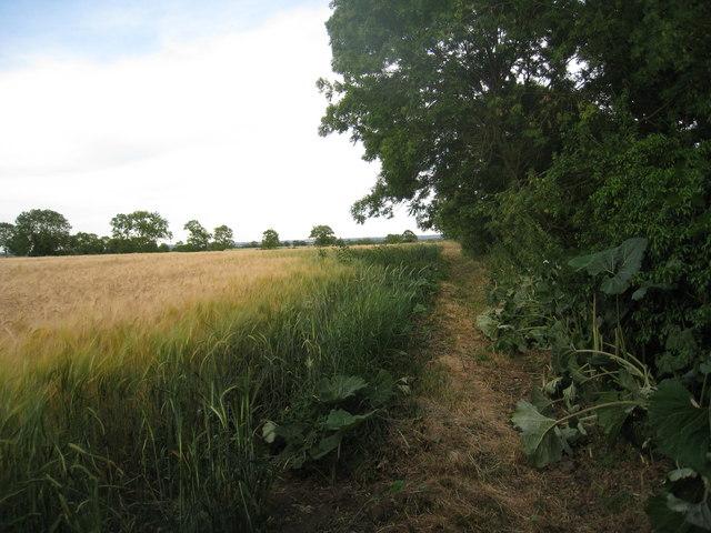 Footpath near Waddingham