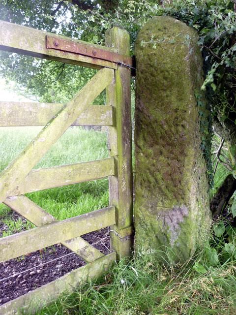 Cut bench mark, gatepost Butt Hill Lane