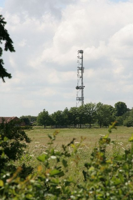 Phone mast over the hedge