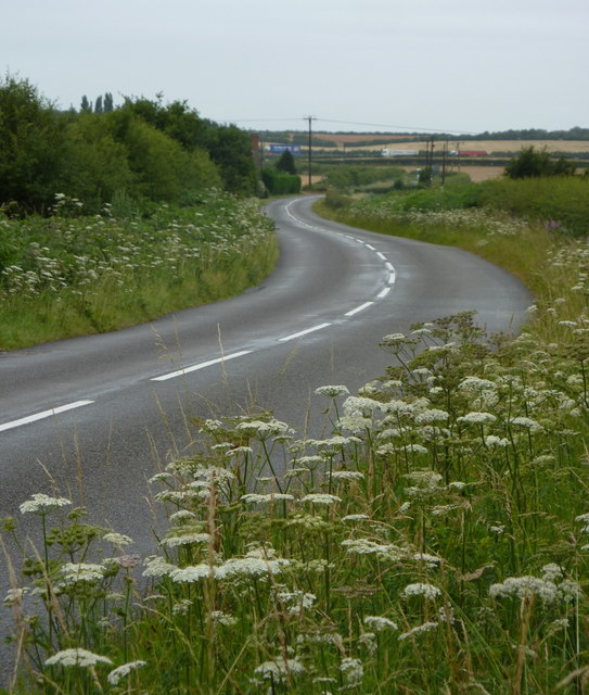 Jockey lane towards the A1
