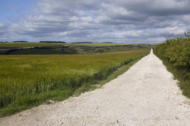 Warrens Farm Track, near Thixendale