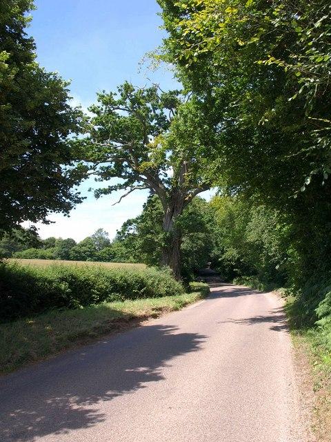 Road near Yettington