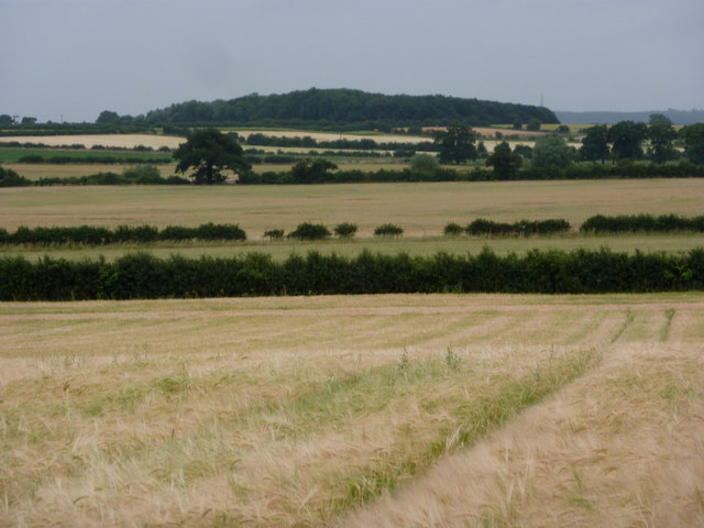 Countryside with fields and hedges