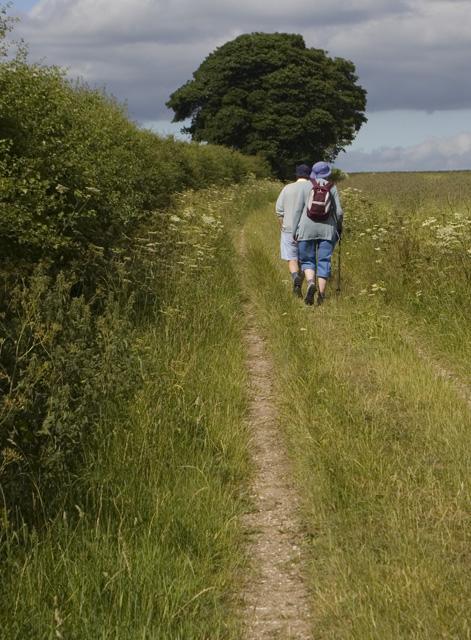 Walkers near Wharram Percy
