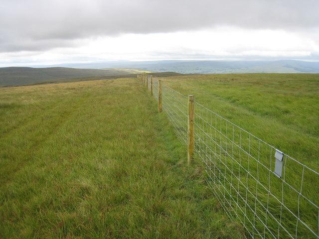 Boundary fence on Great Shunner Fell