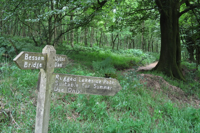 Exmoor : West Hill Woodland Signpost
