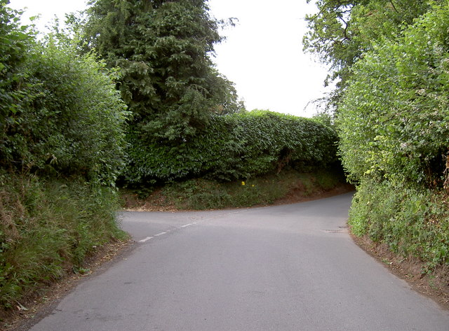 Forked road