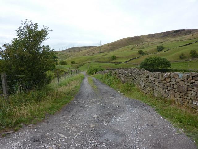 Road to Dean Farm
