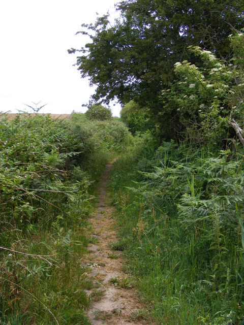 Footpath by Blundeston Marshes