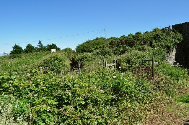 A short, overgrown footpath near Lee Bridge