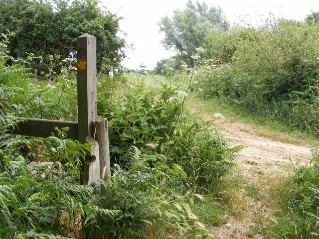 Footpath junction by Blundeston Marshes