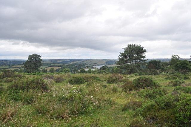 Exmoor : Moorland & Wimbleball Lake