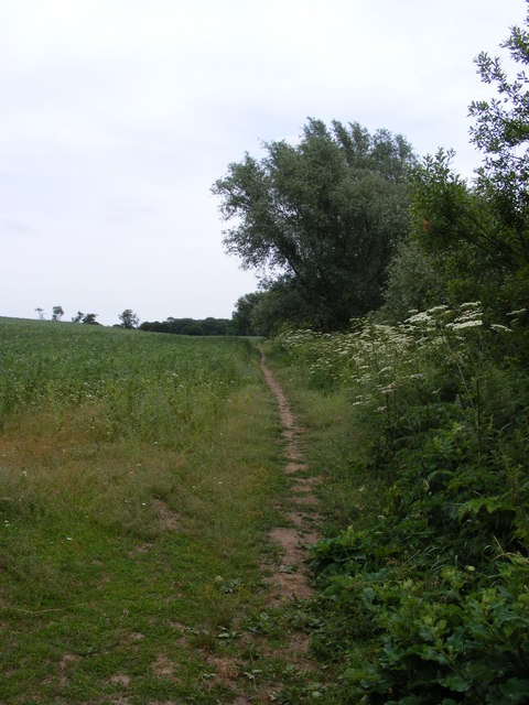 Footpath towards Flixton