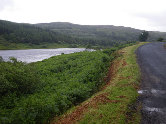 Bracken lined B8073 Road skirting Loch Peallach