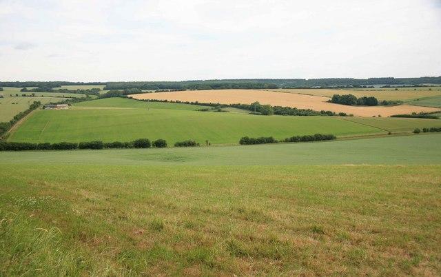 Farmland nr Dinton