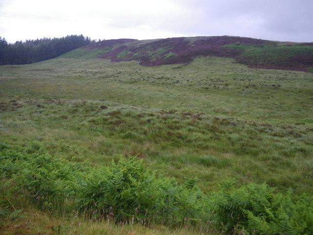 Small ridge somewhat north of Achnadrish