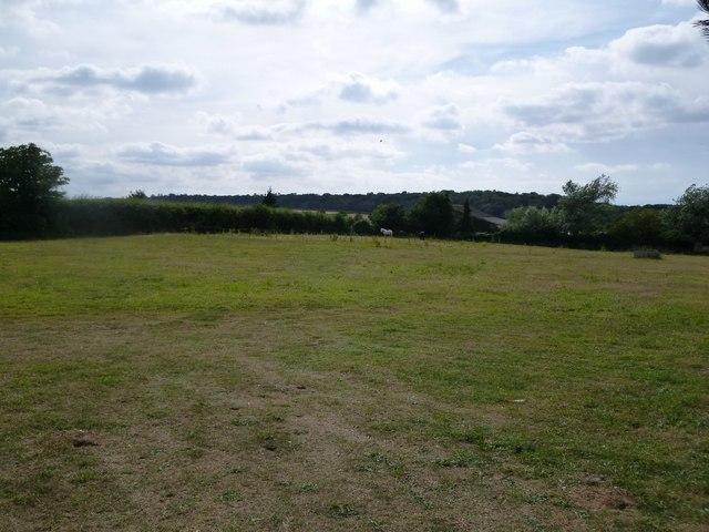 Branthill: pasture